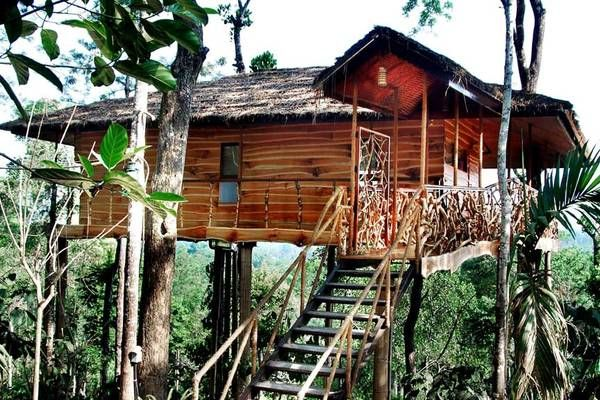 Tranquil Resort in Wayanad