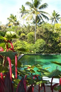 pool_at_serenity_by_Daniel_Nadelbach 2