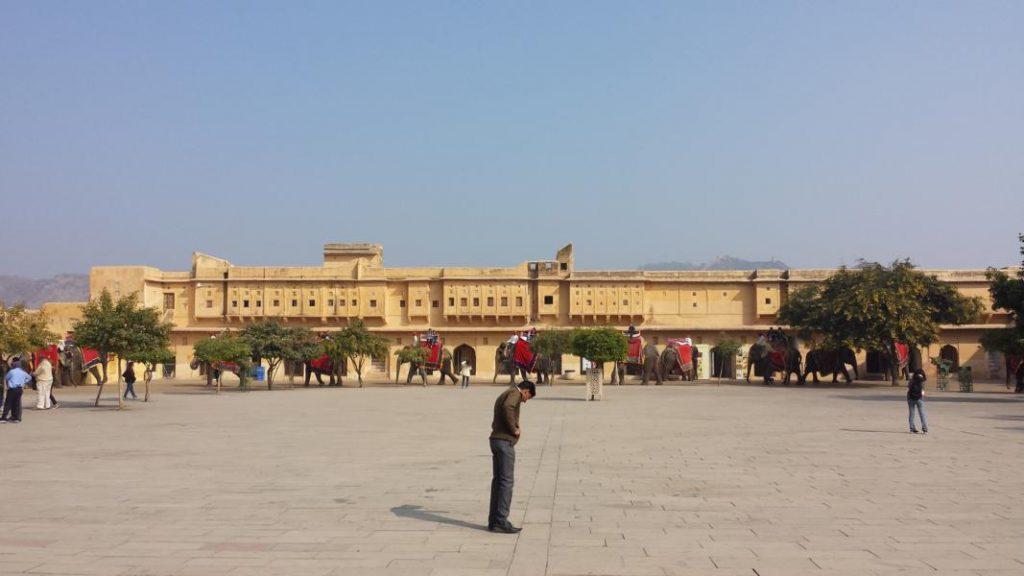 Highlights in Indiens Norden Amber Fort Elefanten