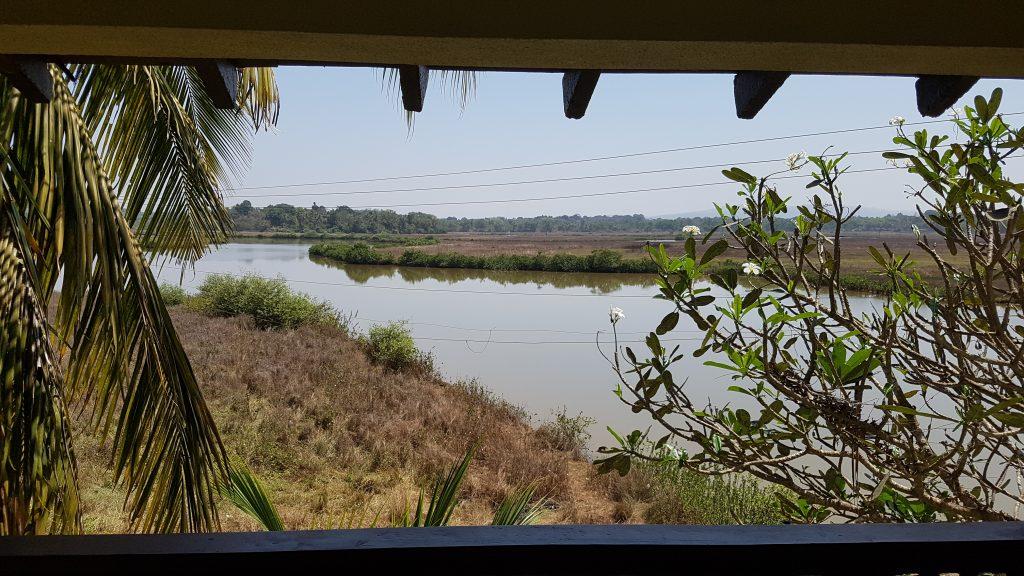 Ausblick auf Mandovi Fluss
