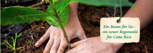 Kolumbien Rundreise Regenwald retten