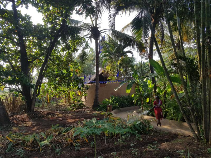 Gemüseanbau des Retreats