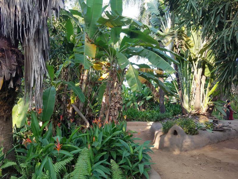 Garten des Retreats